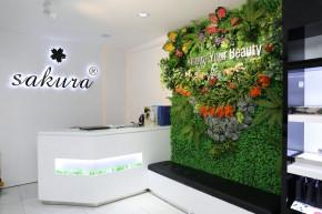 Showroom Đại lý ủy quyền Sakura Bình Dương