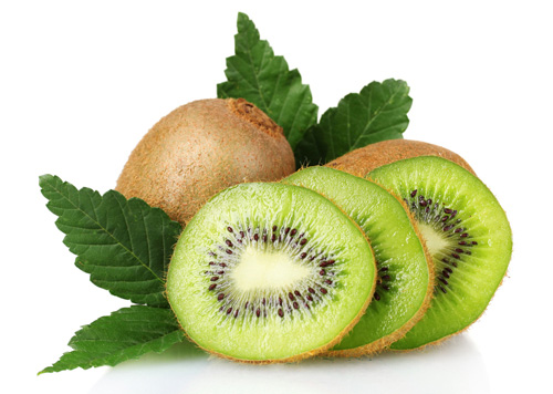 Actinidia polygama fruit extract