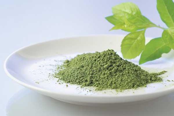 Muốn trị mụn, trắng da hãy dùng bột trà xanh