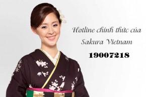 Số điện thoại chính thức Sakura Việt Nam quá tải cuộc gọi