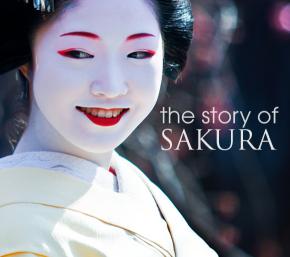 Câu chuyện và triết lý làm đẹp của Sakura