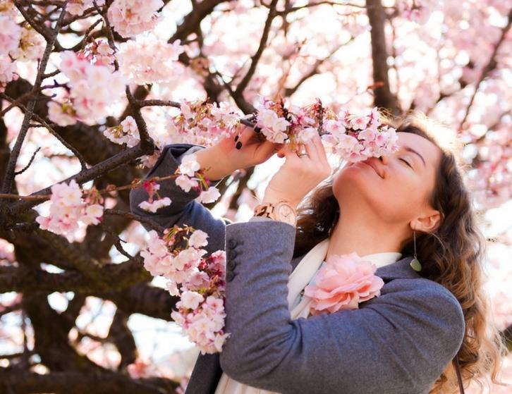 8 công dụng làm đẹp tuyệt vời từ hoa anh đào