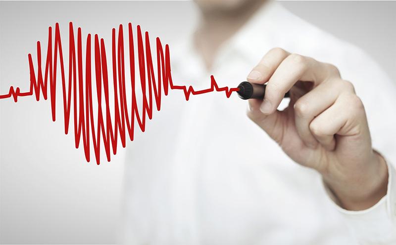 Tảo xoắn có tác dụng phòng ngừa nguy cơ mắc bệnh tim