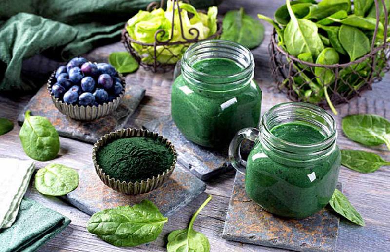 Tảo xoắn mang tới nhiều dưỡng chất quý hiếm, có giá trị cao đối với sức khỏe