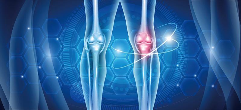 collagen giúp xương khớp hoạt động linh hoạt