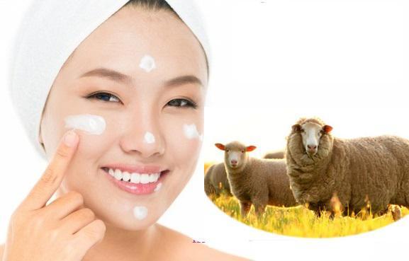 nhau thai cừu thải độc tố cho da
